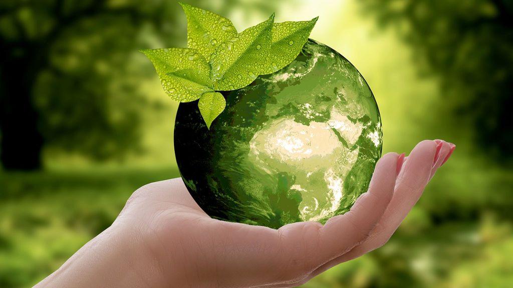 Ekologia codziennych wyborów